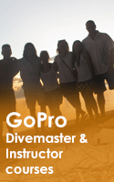 Go Pro Instructor Courses