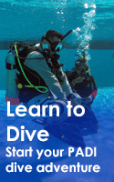 PADI learn to dive courses